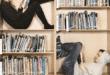 15 quyển sách hay nên đọc khi còn trẻ