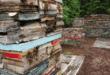 7 quyển sách hay về rừng nên đọc