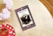 Những cuốn sách của Charles Dickens nổi bật nên đọc