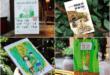 10 cuốn sách hay về tuổi thơ chân thực đến cùng