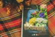 6 cuốn sách cho người độc thân có sức lan tỏa mạnh mẽ