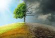 5 cuốn sách hay về biến đổi khí hậu bất kỳ ai cũng nên đọc