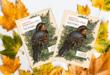 5 quyển sách hay về các loài chim đầy trực quan và sinh động
