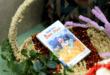 8 cuốn sách hay về trẻ tự kỷ và chậm phát triển